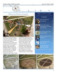 CAIRS Newsletter 2013