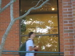 Cook Library Art Gallery, Outside Window 1