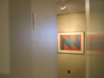 Cook Library Art Gallery (Thornton Willis)