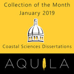 Collection of the Month January 2019