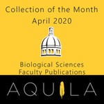 Collection of the Month April 2020